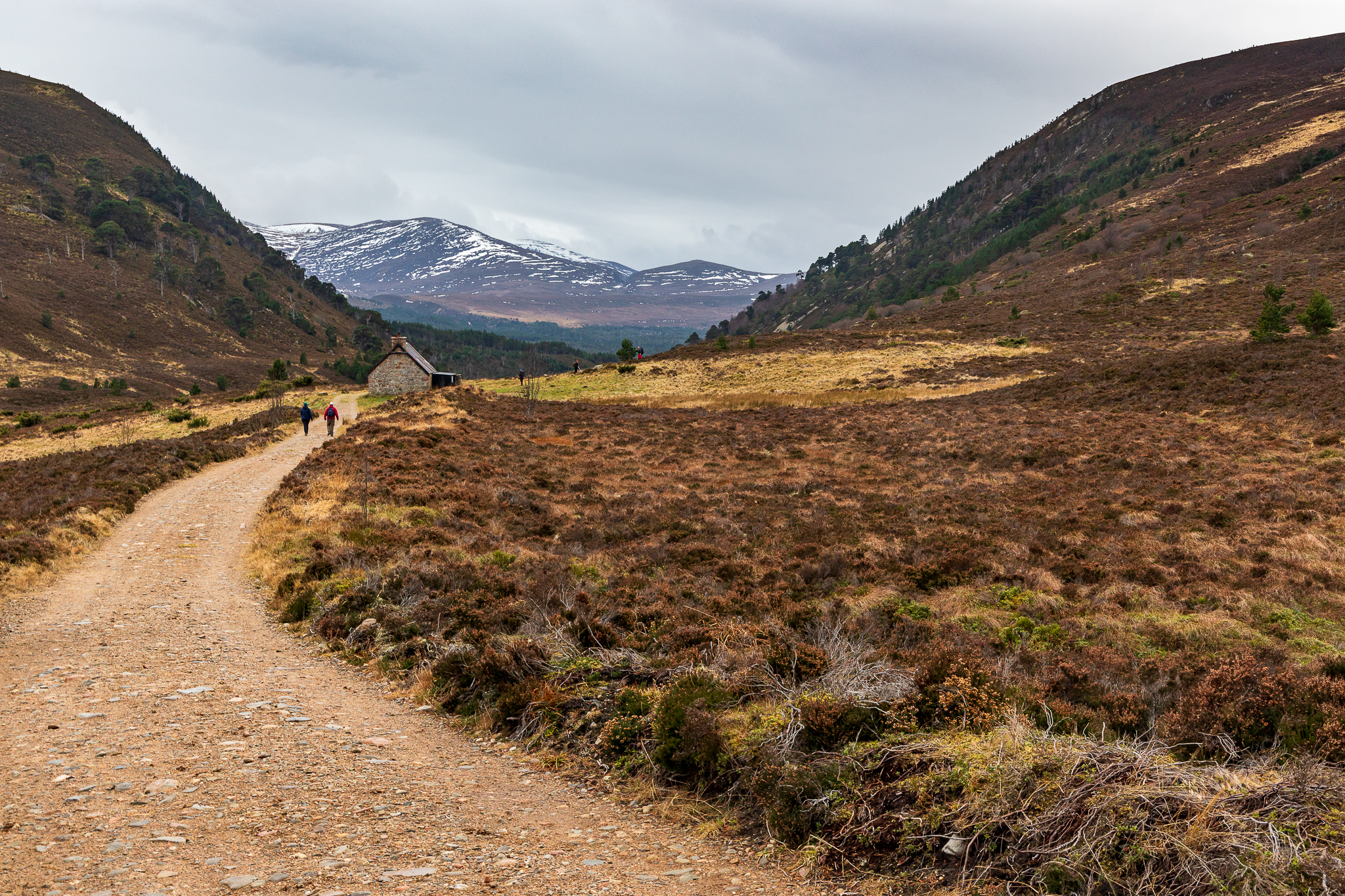 A Taste of the Cairngorms