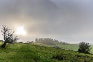 Sunshine in the fog