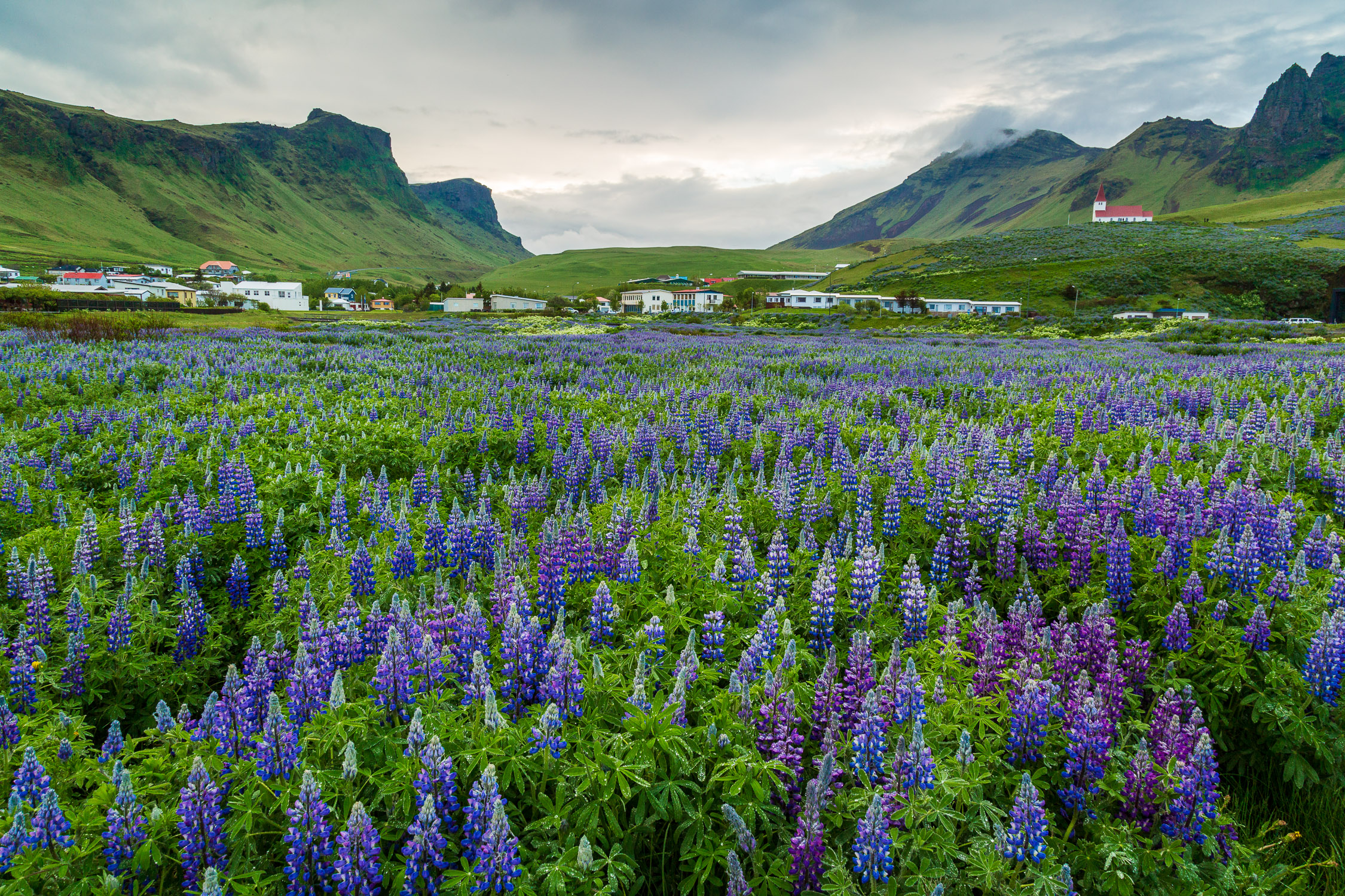 Vik, Southern Iceland
