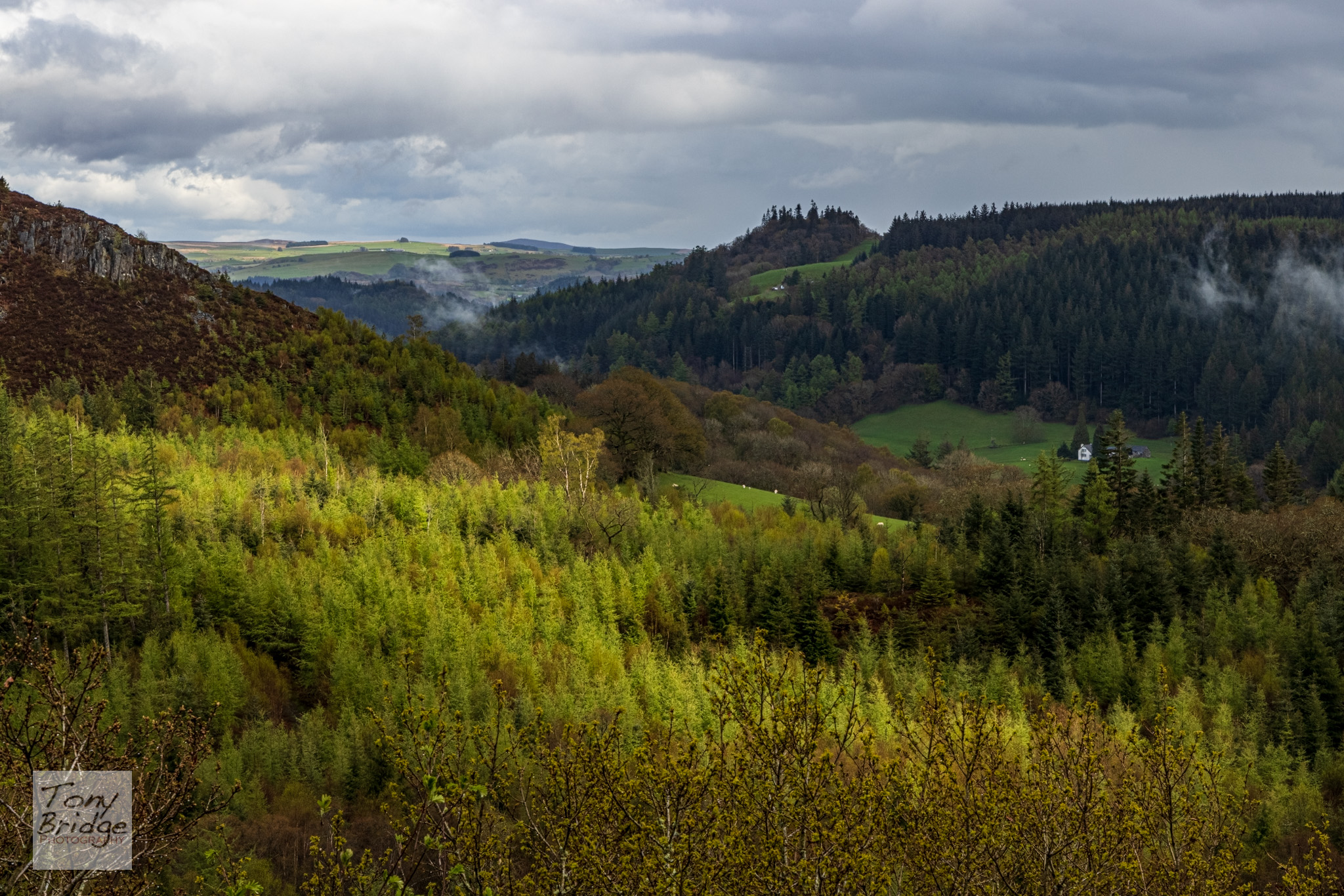 View across the Afon Llugwy valley towards Betws-y-Coed.