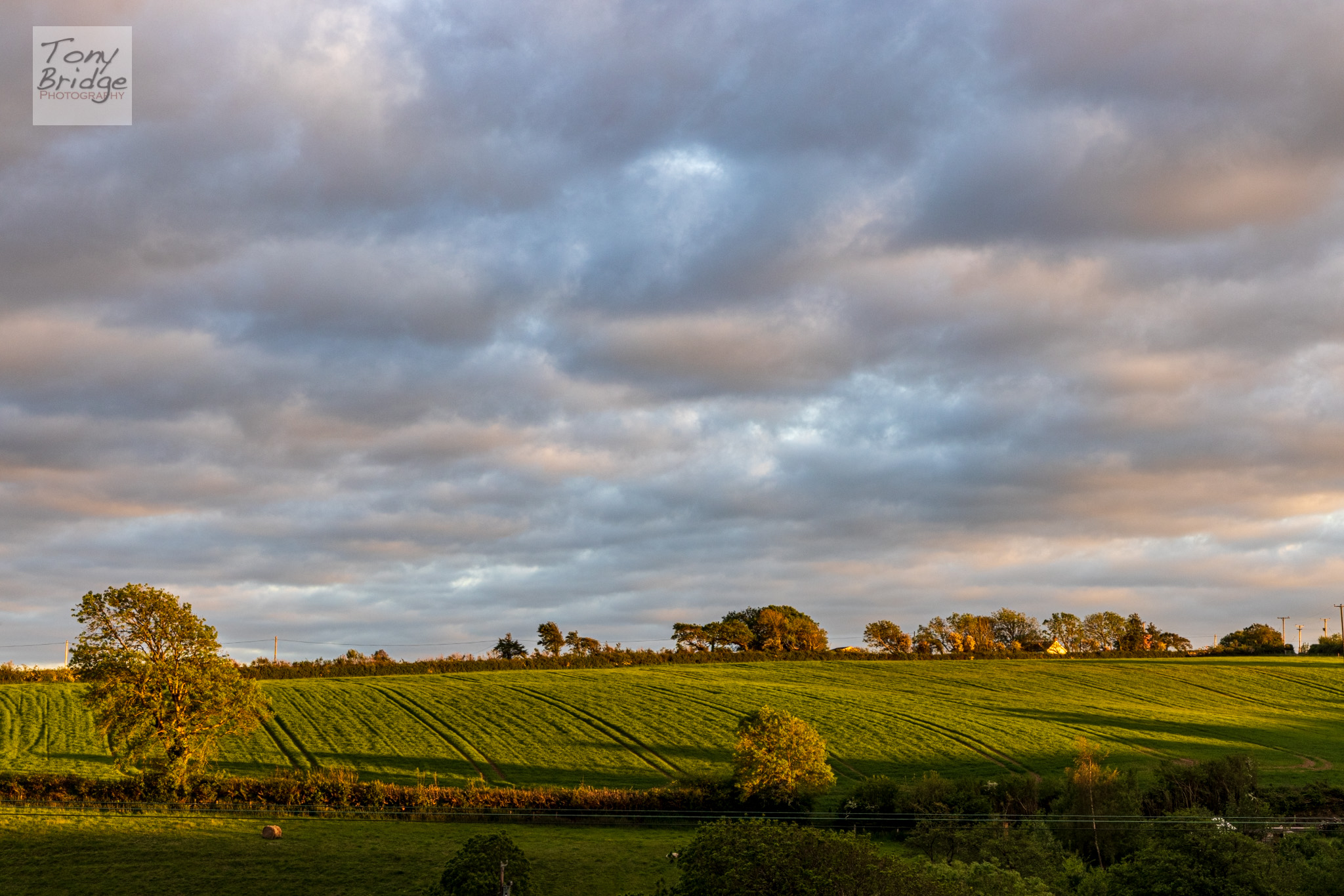 Late evening over the North Devon countryside